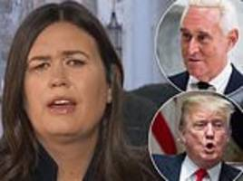 sanders refuses to deny trump directed 'senior campaign official' to talk to stone about wikileaks