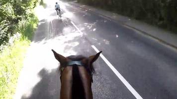 cyclist fined for hitting horse in windsor triathlon