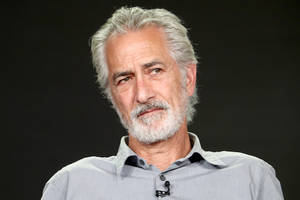 david strathairn to star opposite peter sarsgaard on cbs all access true-crime drama 'interrogation'
