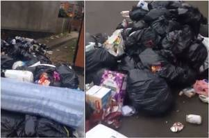 'absolute disgrace' - shocking video of rubbish strewn street shows impact of city bins strike