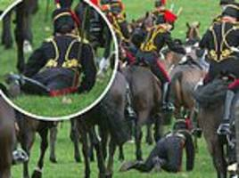 rider with the king's troop royal horse artillery falls from her horse
