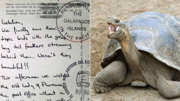 Cards sent from Galapagos Islands take 30 years to arrive