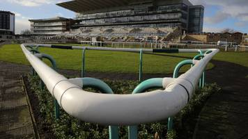 equine flu: four new positive tests returned at simon crisford's newmarket yard
