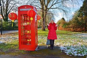 why a compton florist has begun decorating a phone box to mark special occasions