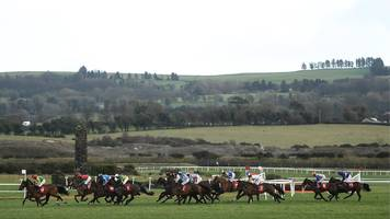 equine flu: british horses cleared to race in ireland after outbreak