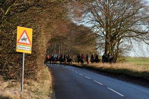 Vet among those in Gloucestershire calling for racing to resume this week despite new equine influenza cases being identified