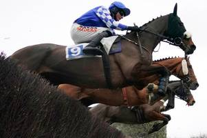 leicester racecourse hoping to clear equine flu hurdle for thursday's race meeting