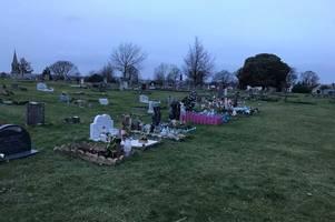 grieving medway mum's distress dogs foul on her baby son's grave