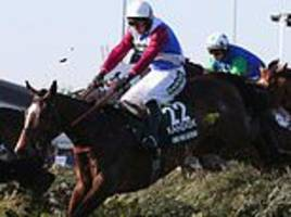 big-name grand national horses including one for arthur to be temporarily barred from running