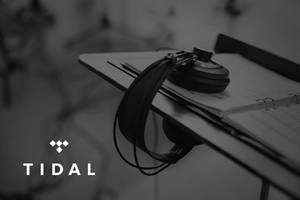 tidal follows spotify, adds block button for specific artists