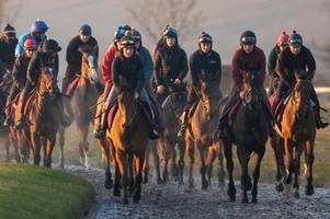 How equine flu outbreak has impacted horse racing schedule at Market Rasen racecourse