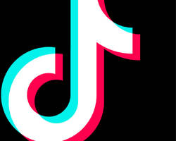 Indian lawmakers call for TikTok ban, alleging spread of 'cultural degradation' among teens