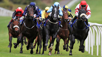 equine flu: trainers welcome racing return after six-day shutdown