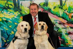 adorable superdogs helping scots veterans cope with universal credit chaos