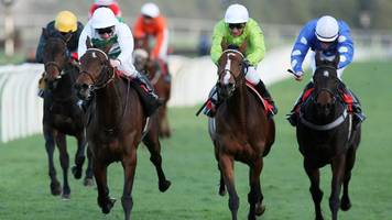 'racing not out of woods' over equine flu, says animal health expert