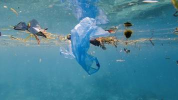bp: plastic ban could have unintended consequences