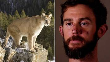 hiker speaks after taking on mountain lion...and winning