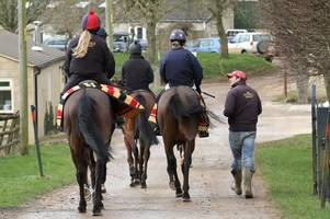 ben pauling: twice yearly equine flu vaccinations may be brought in permanently