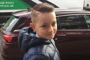 taylor, 12, killed crossing the road in crash as fundraising page set up for family
