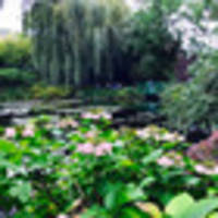 vive la france: touring monet's giverny gardens and picnicking the loire
