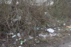 Chocolate bar wrappers, coffee cups, plastic bags and even a HOSEPIPE - the rubbish thrown along country lane near Lincoln