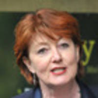 Auditor-General steps put of inquiry into claims against National MP Maggie Barry