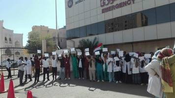 doctors in sudan are key to the current protests