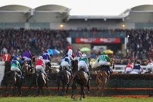 Racing expert explains why you should back Laurina in the Cheltenham Champion Hurdle