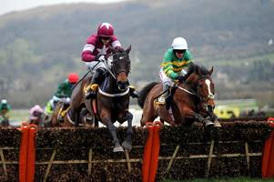 Cheltenham Festival 2019 tips: Champion Hurdle: runners and riders, odds and preview
