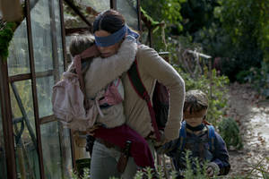 Netflix Removes Real Tragedy Footage From 'Bird Box' 2 Months After Public Outcry