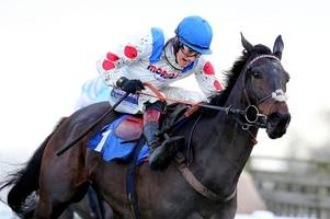 Why Sir Alex Ferguson's horse Clan Des Obeaux can win the 2019 Cheltenham Gold Cup