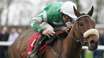 'it's terrifying' - presenting percy ready for cheltenham gold cup showdown