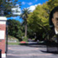 Greens co-leader James Shaw attacked as he walked to Parliament