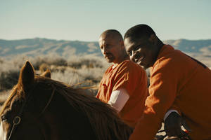 'the mustang' film review: matthias schoenaerts tames a horse and saves himself in prison drama