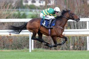 Cheltenham Festival horse Sir Erec's death to be investigated by BHA