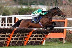 Sir Erec second horse to die at Cheltenham Festival 2019 after JCB Triumph Hurdle