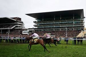 Where your horse finished in the Cheltenham Gold Cup 2019