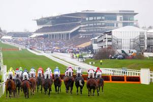 Cheltenham Festival 2019 tragedy as Invitation Only becomes second horse to die on Gold Cup Day