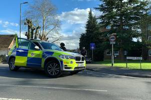witnesses describe moment they see 'men handcuffed' by armed police in brentwood