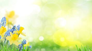 what makes the spring equinox so special?