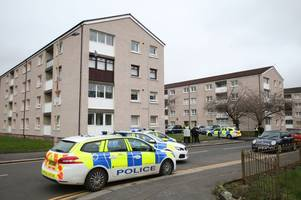breaking: cops launch murder investigation after man dies in paisley