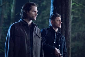 'supernatural' to end after 15th season on the cw