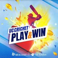 virendra sehwag and irfan pathan to be uc cricket captains during ipl 2019