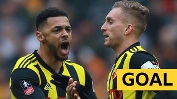 fa cup: gerard deulofeu scores a magnificent goal for watford against wolves