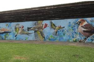 mural unveiled at tamworth beauty spot belgrave lakes