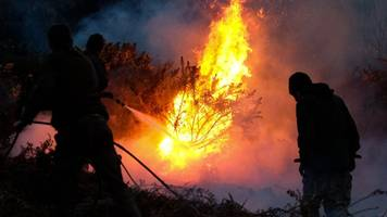 in pictures: fire crews tackle guisborough gorse blaze