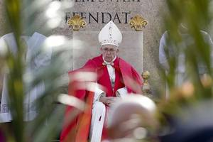 pope francis blesses palm branches as he ushers in holy week