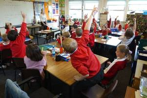 Hull and East Yorkshire primary school admissions: This is how many children have got their first choice