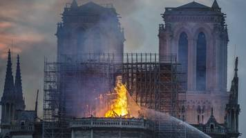 Notre Dame Cathedral Miracle -- All Is Not Lost