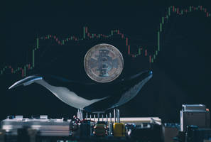 is bitcoin price action repeating itself? real or fakeout?